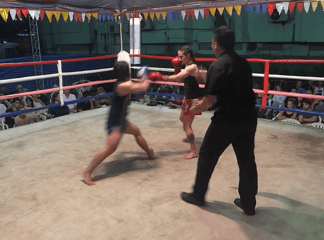 33rd Fight - Fourth Round Touch gloves