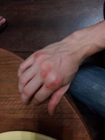 Muay Thai Knuckles
