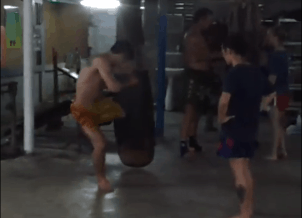 The Thai Low Kick