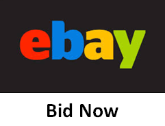 Bid on Ebay Now - Sylvie von Duuglas-Ittu