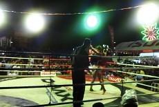 ferris wheel in the clinch - Fight 88