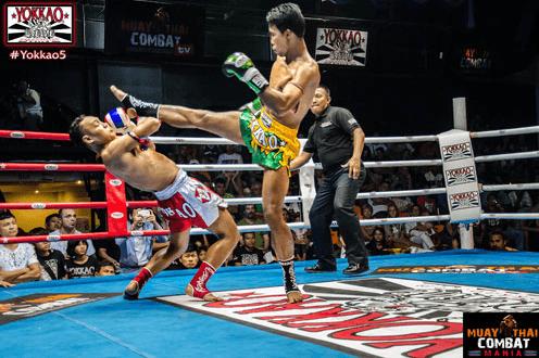 Saenchai Dodge - Yokkao - Muay Thai Technique