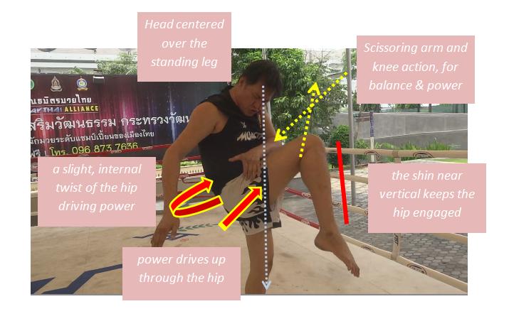Dieselnoi Mechanics - Hidden Knee Power