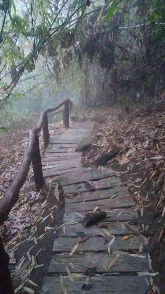 Stairs Up to the Waterfall 2