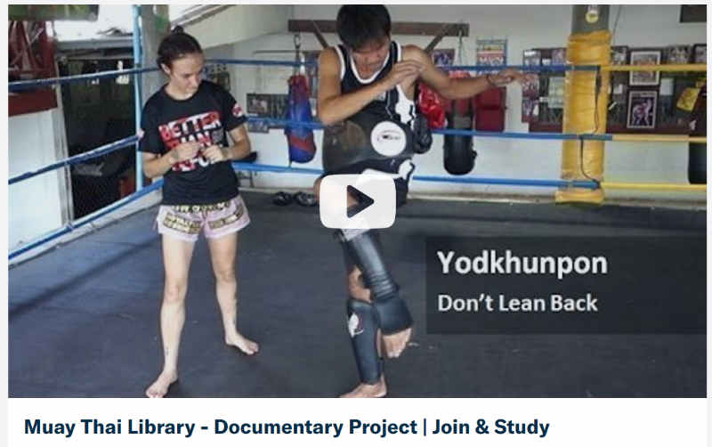 Muay Thai Library Project