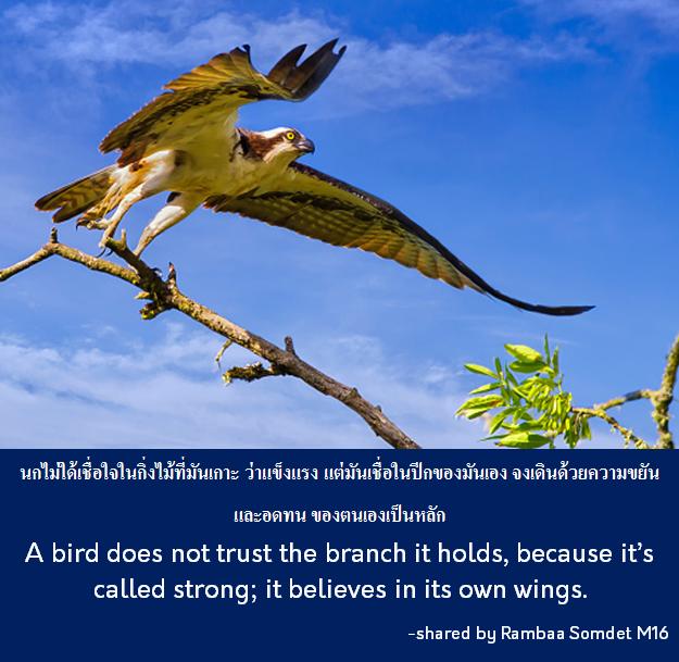 Rambaa Somdet wisdom