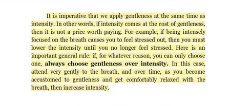 train-like-a-thai-gentleness-over-intensity