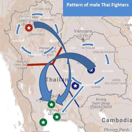 Pattern of Male Thai Fighters