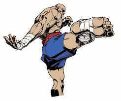 street fighter sagat kick